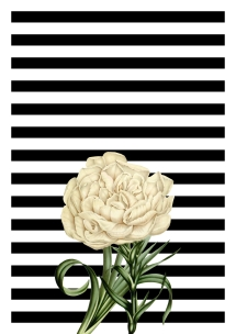 floral-black